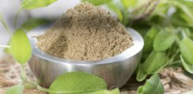 What's The Most Euphoric Feeling Kratom And Where To Buy It?