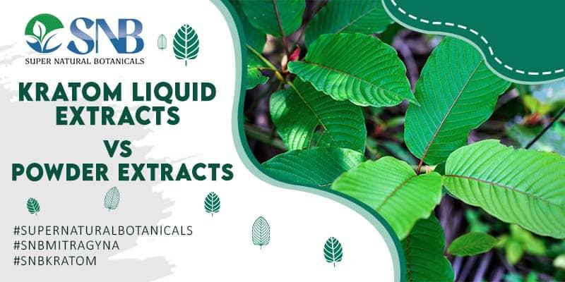 Kratom Liquid vs Kratom Powder Extracts