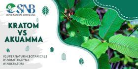 effects of kratom vs akuamma