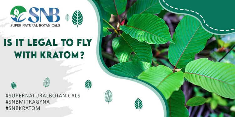 Fly With Kratom