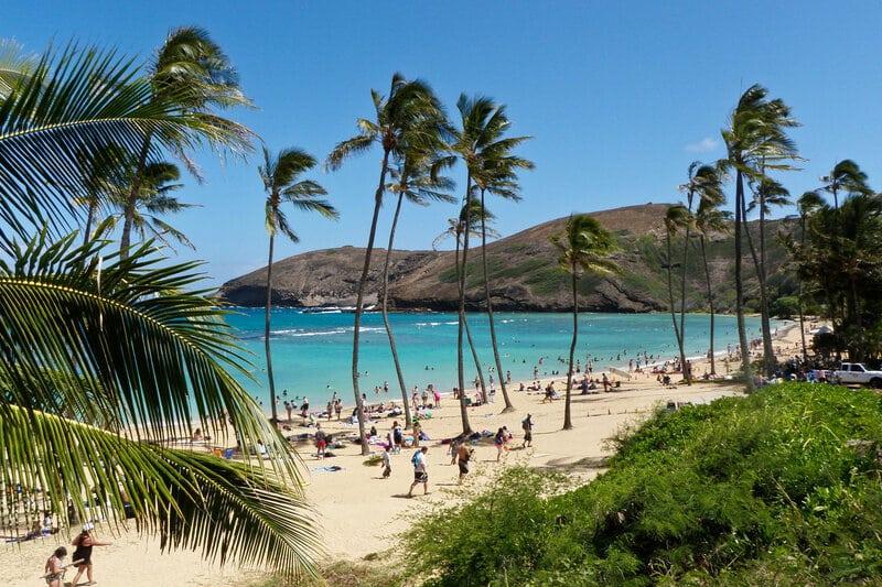 Kratom Legal Hawaii
