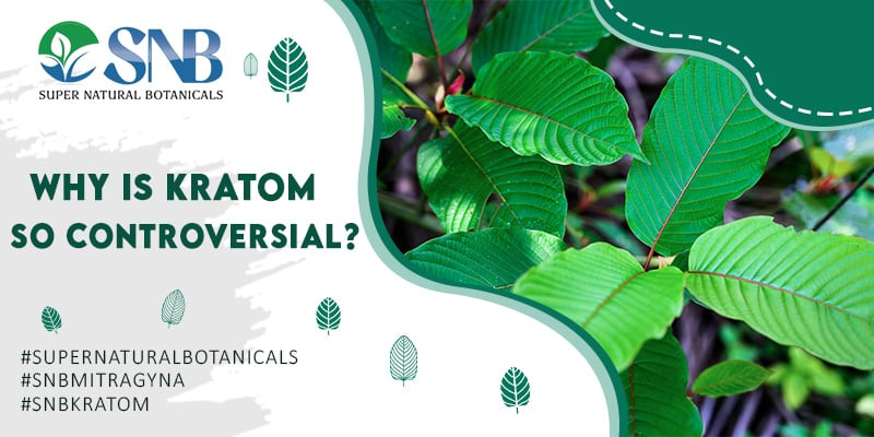 Why Kratom Controversial